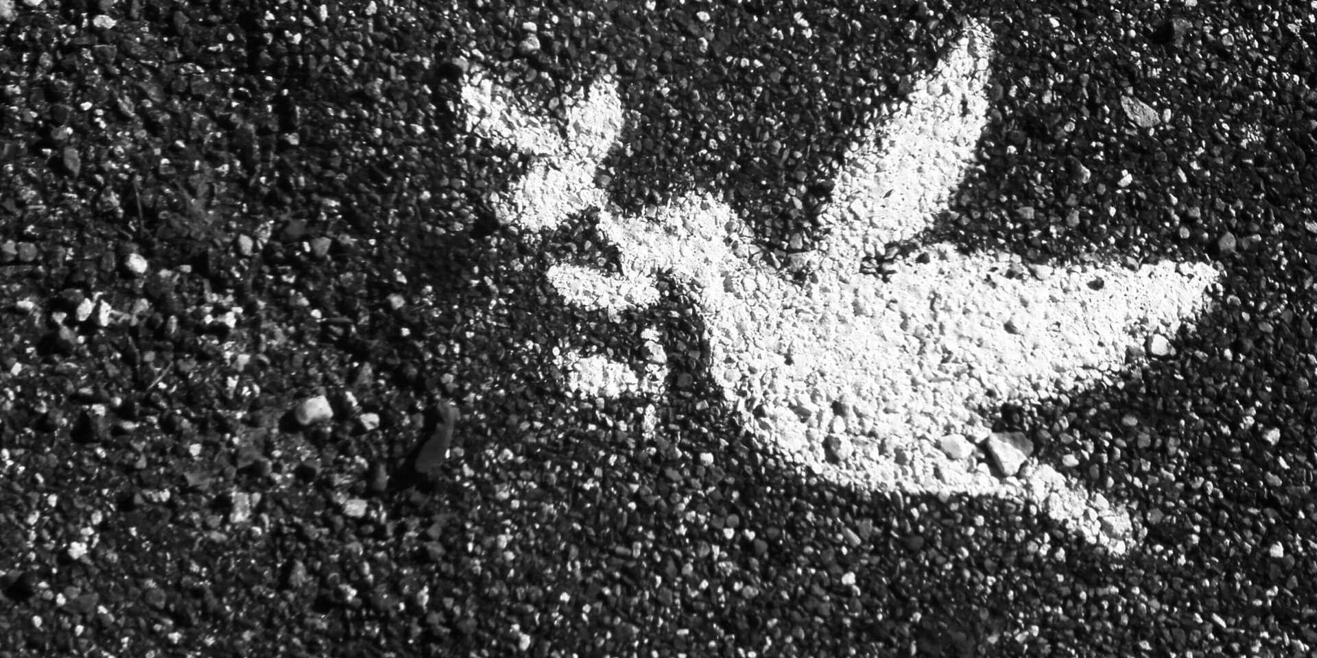 Weiße Friedenstaube als Grafik auf Straße